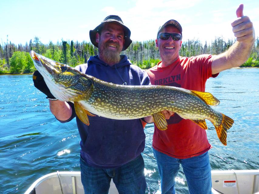 Cree river lodge wapata lake saskatchewan fishing for Larry king fish oil